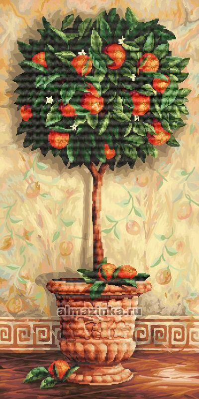 «Апельсиновое дерево»