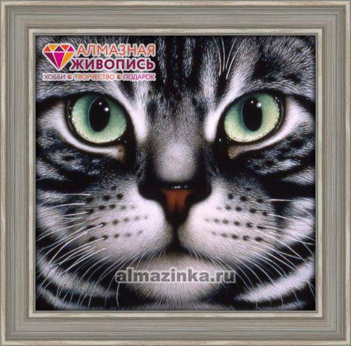 Вышивка мордочка кота